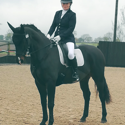 Online Dressage horse and rider