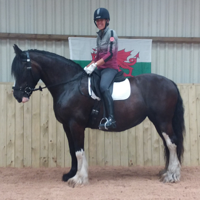 Horse and rider in front of a Wales flag