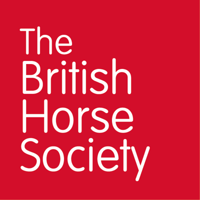 The British Horse Society Platinum Online Dressage League