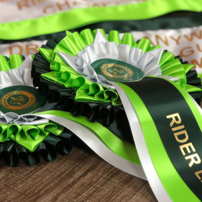 Online Dressage Rider League champion rosettes and sashes