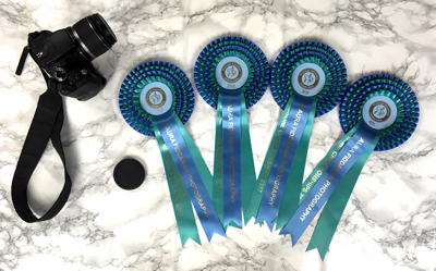 Championship rosettes for the Novice class