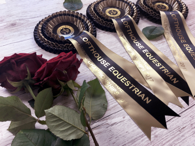 Championship rosettes for the Preliminary class