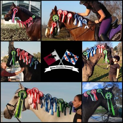 Collage of online dressage riders